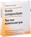 testis_kompozitum